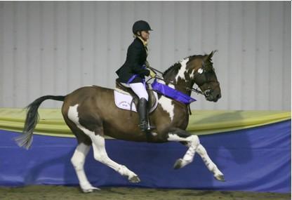 BSPA Gallop1
