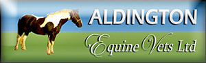 Aldington Equine Vets Ltd