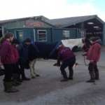 Students who are studying Equine or Veterinary Nursing
